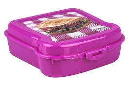HEGA Pojemnik SANDWICHEGA śniadaniowy 14 x 14 x 5 - mix kolorów