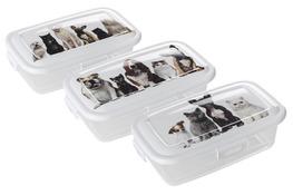 HEGA ZWI pojemnik DOBERMAN na przysmaki dla psa i kota 0.25 L - mix wzorów